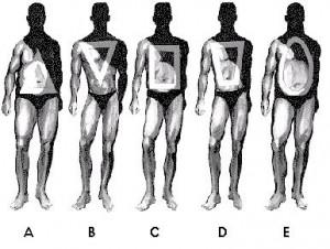 Male_body_shape-300x226